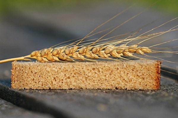 Tecnologia reduz aditivos e melhora qualidade do trigo nacional
